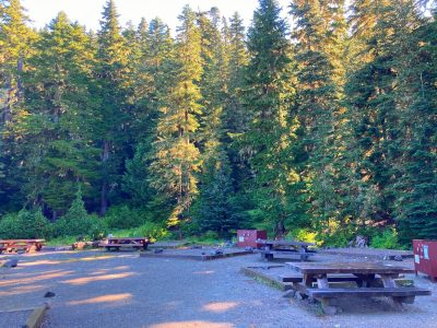 A grave campground surrounded by forest. There are picnic tables and brown metal bear safe lockers