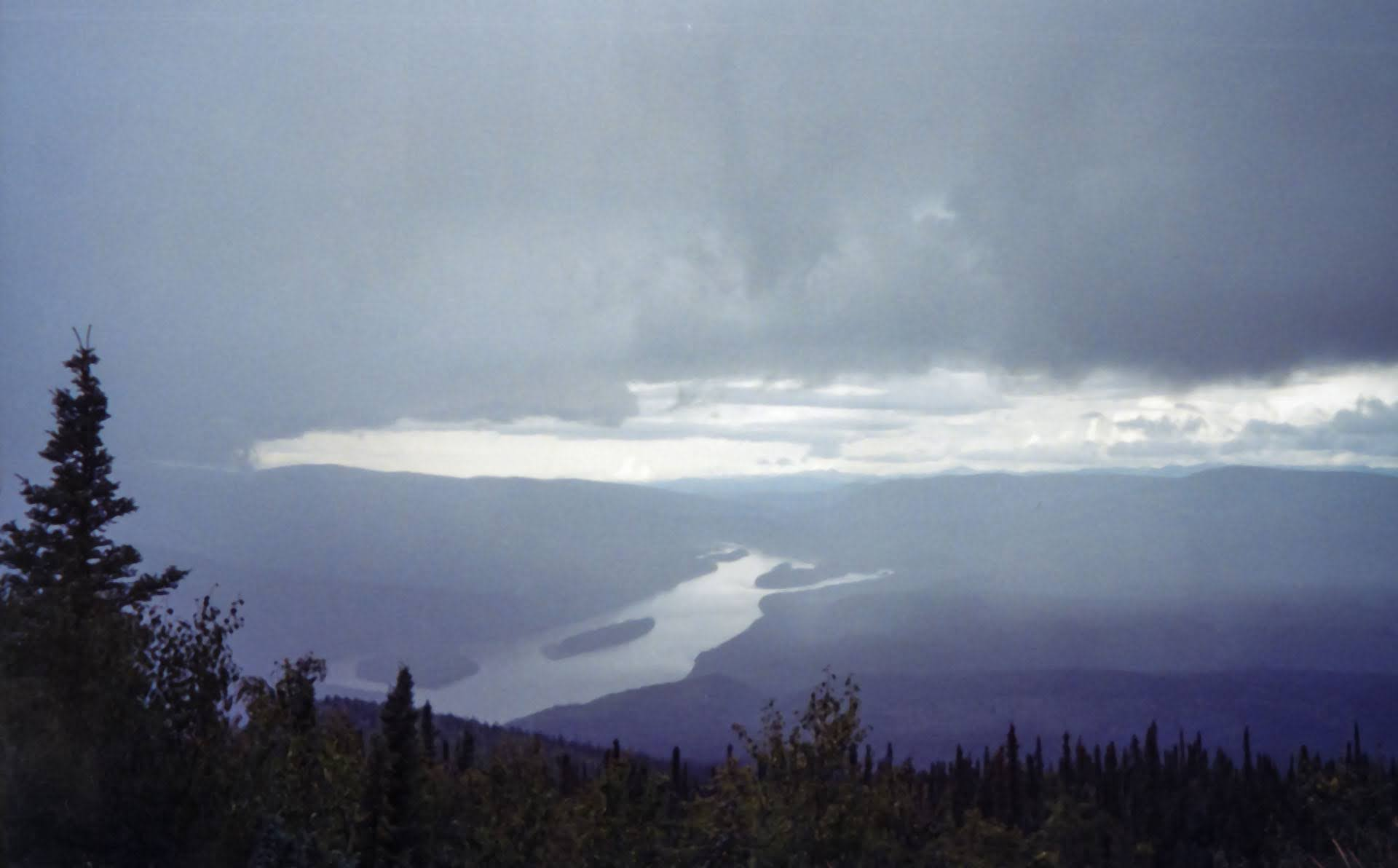 A view of the yukon river from high above at the top of midnight dome. It's a stormy and cloudy day and the river is flowing between forested hills. There are trees in the foreground. Driving or hiking to the summit of midnight dome is a popular thing to do in dawson city
