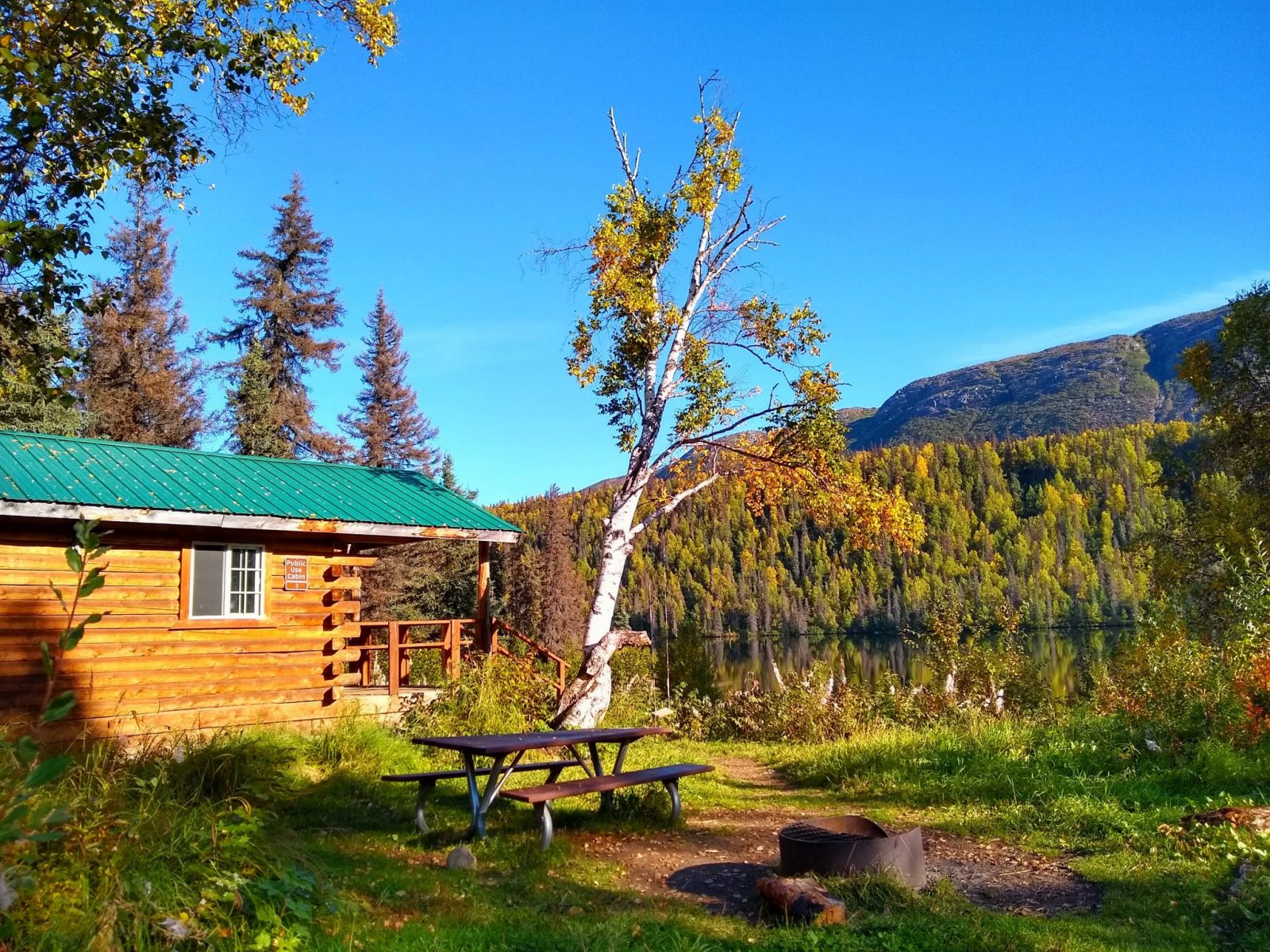 Camping in Alaska at the Byers Lake Cabin in Denali State park. It's a log cabin with an open window, a green metal roof and a porch with a railing facing a calm lake. The lake is surrounded by trees and there is a fire ring and a picnic table in the foreground
