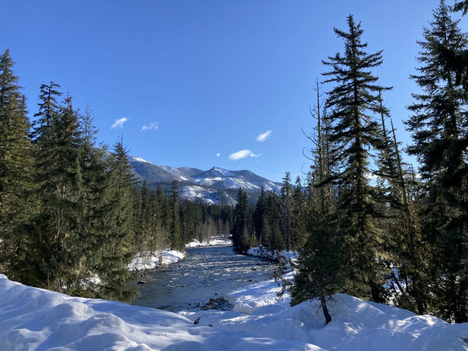 Blue sky with distant low snowy mountains. In the foreground there are evergreen trees and snow around a fast moving river in the Salmon La Sac sno park near cle elum