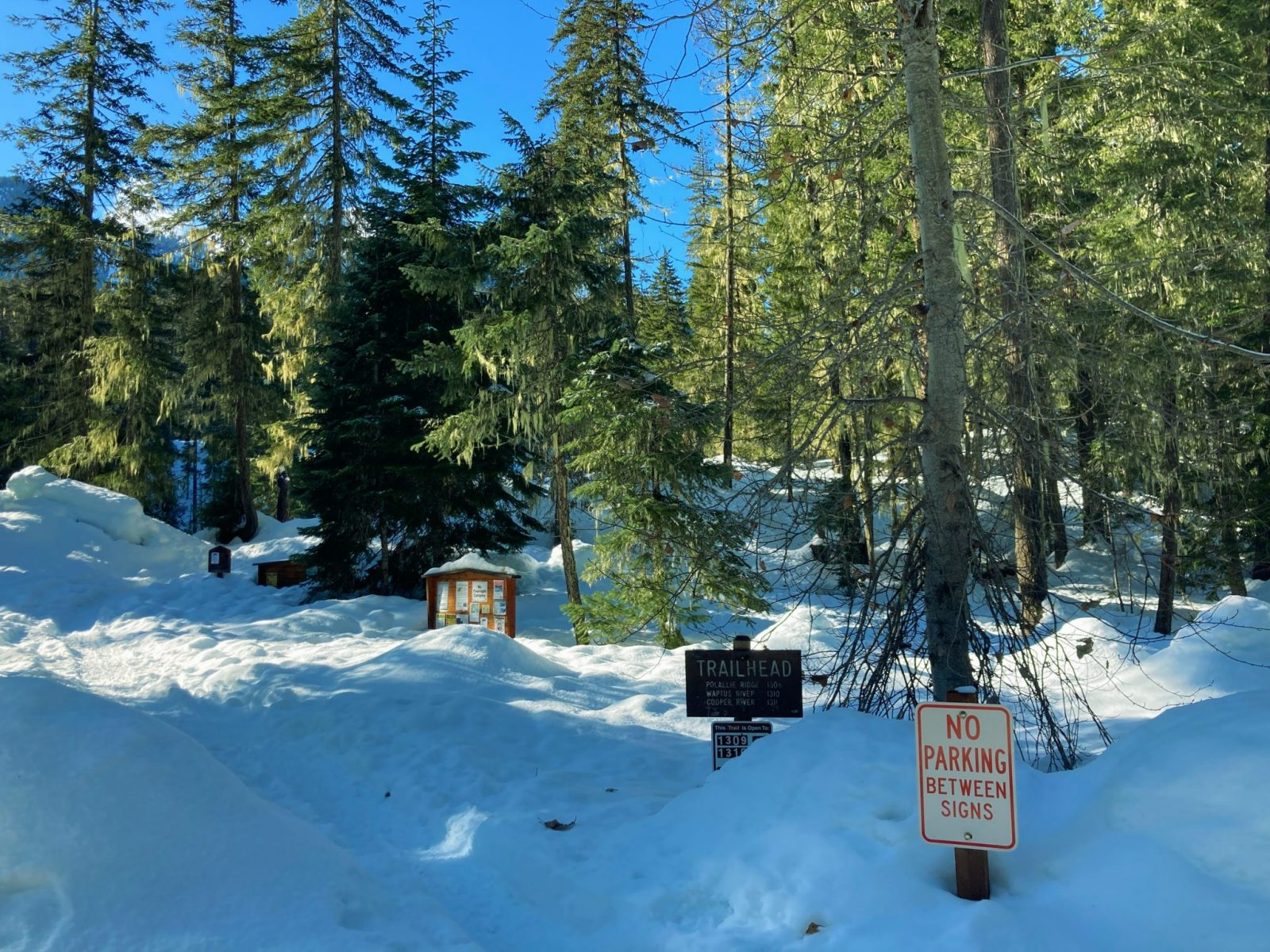 The salmon la sac trailhead, a forested trailhead in winter with lots of snow. There are several signs, including a no parking sign, a trailhead sign and a board with many announcements
