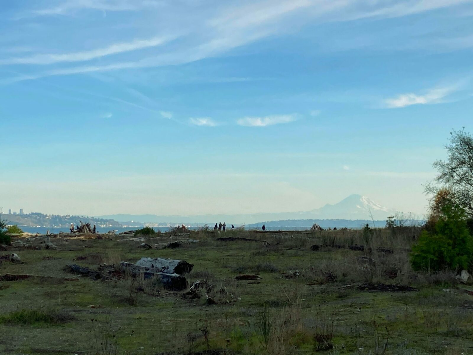 One of the best things to do on Bainbridge Island is visit Faye Bainbridge Park. The park has grass, driftwood and people are walking along the beach. You can see the water and mountains and a city in the distance