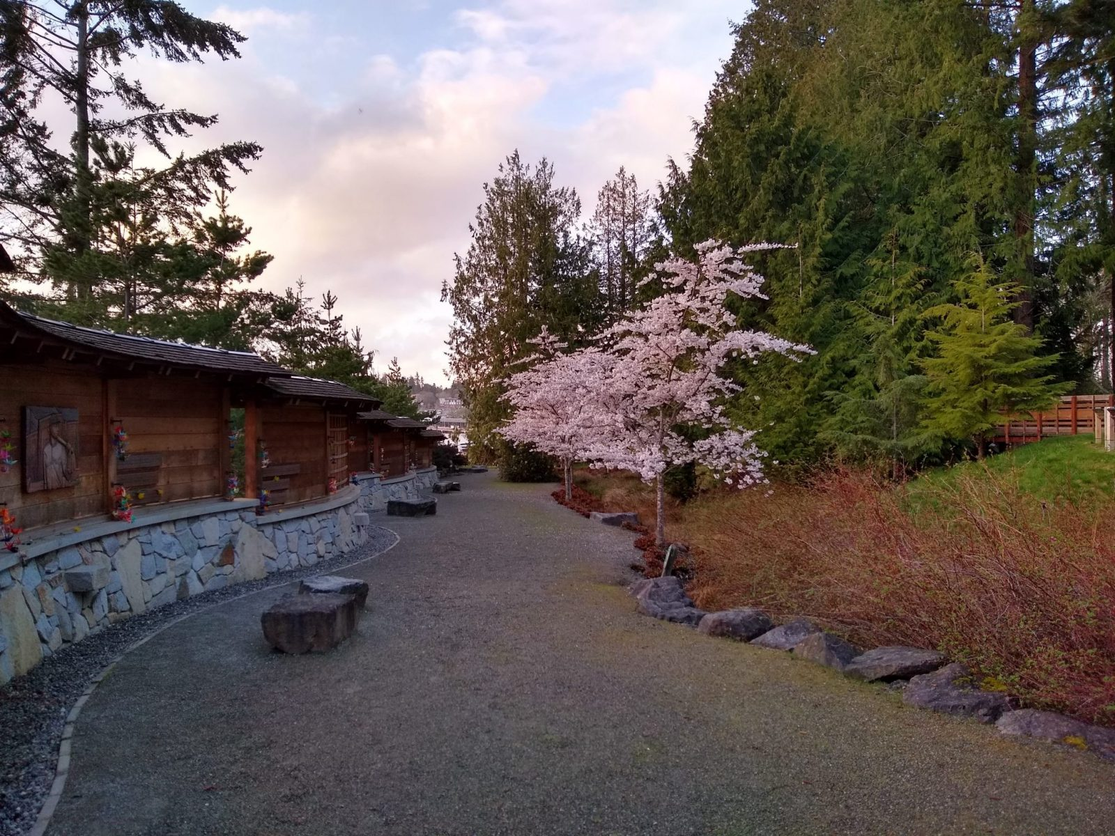 A gravel path lined with rocks and a wooden memorial along the side. The other side has flowering trees and evergreen trees
