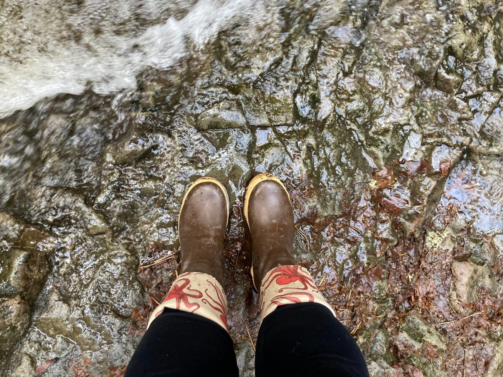 A person's legs wearing leggings and rubber boots standing at the edge of a creek on a winter hike