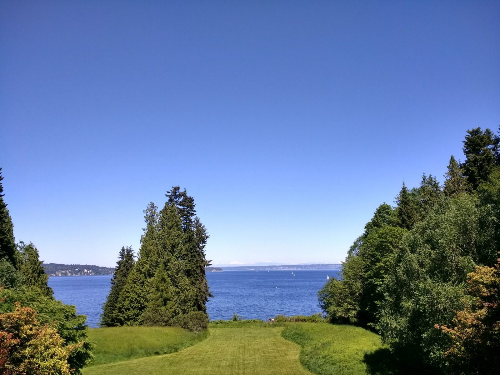 Blue skies and blue water in the distance framed by green grass and evergreen trees in Bloedel Reserve on Bainbridge Island