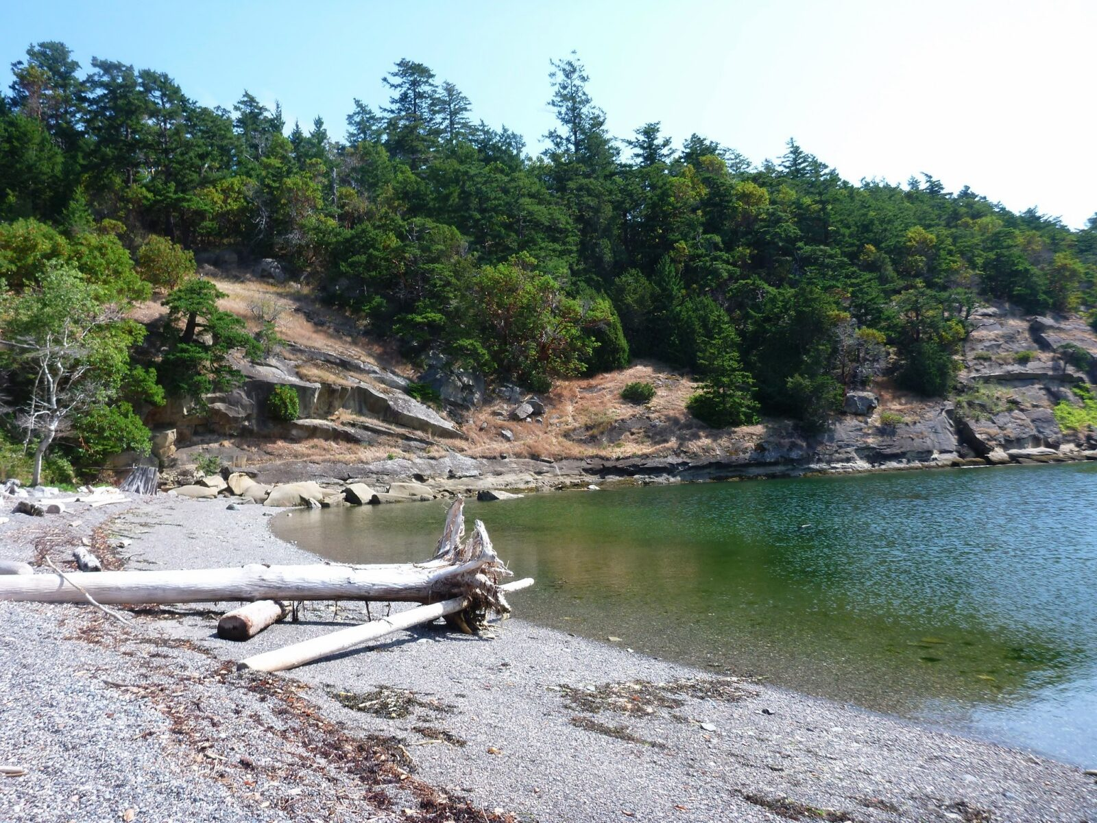 A gravel beach on Sucia Island. The water is shallow and blue green color. The sky is washed out and there are rocky outcroppings around the bay with some trees. There is a long piece of driftwood on the beach