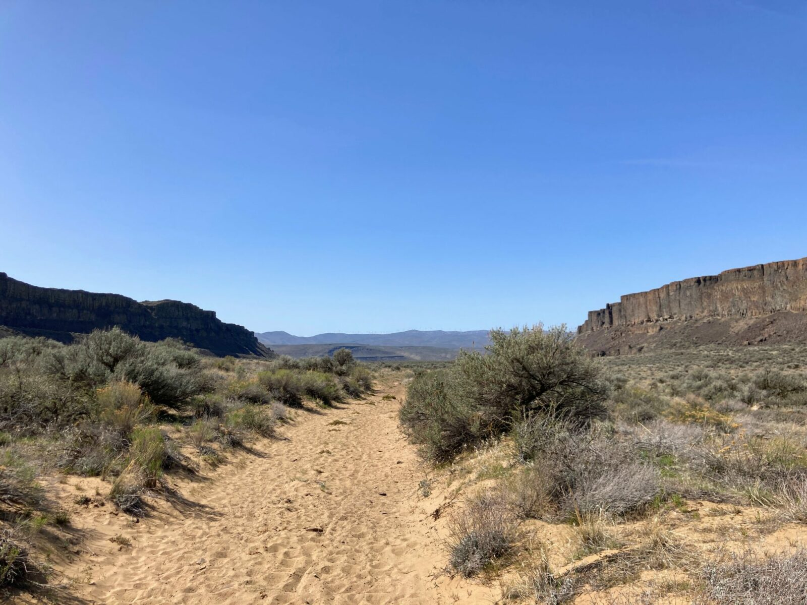 Frenchman coulee is lined with black and brown vertical columnar basalt and a floor of sand and sage brush. In the distance are more high hills