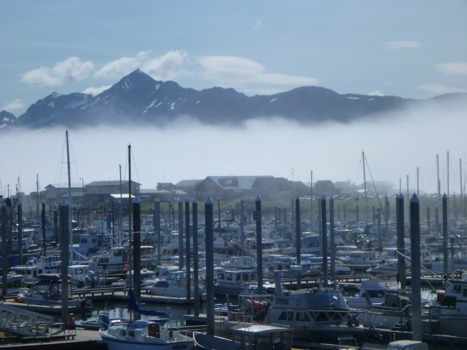 The Homer small boat harbor with many pleasure and fishing boats tied up at the docks. There are low buildings behind the harbor and low fog over the water. Above the fog mountains are rising up
