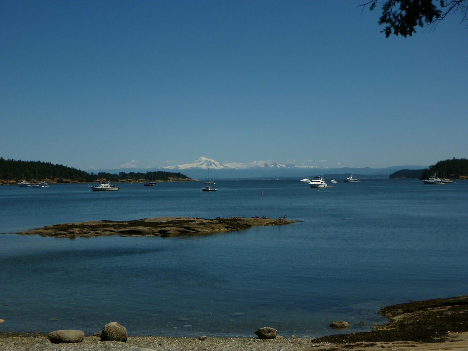 Echo Bay on Sucia Island with many pleasure boats tied to mooring buoys. There are rocky bits around and in the bay and it is surrounded by forest. In the distance is Mt Baker, a high snowcapped mountain